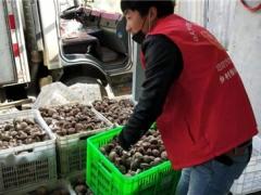 """战""""疫""""保销路:社员网小红帽助柳川沟香菇上行4000斤 ()"""