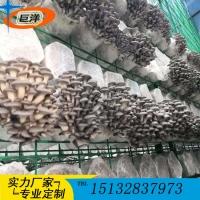 猴头菇出菇网格 平菇出菇房网架 香菇钢管层架 金针菇养殖架