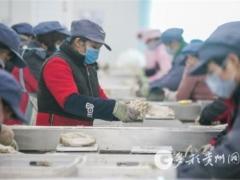毕节:大方雪榕复工 每天上市食用菌120余吨 ()