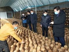 邢台市场监管局在复工复产中帮农户销售蘑菇