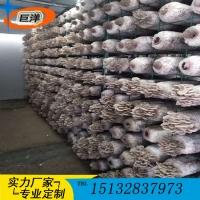 江西省绿色蘑菇网片 现代化大棚出菇网格架 betvlctor伟德规模化养殖架