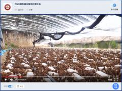 宁晋县金元betvlctor伟德种植专业合作社带领2020第五届全国羊肚菌大会代