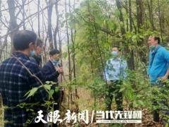专家助力,册亨县确定首期2万棒林下红托竹荪试点基地