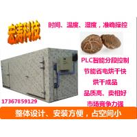 电加热烘箱 蘑菇烘干机 食品热风循环烘箱 鼓风式干燥箱