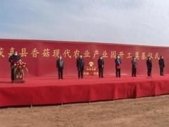 总投资4000万 占地200亩 获嘉县香菇现代农业产业园项目开工奠基 ()
