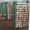 食用菌种植浸塑网格架 蘑菇网片