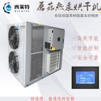 广州蘑菇空气能烘干机菌类烘干设备