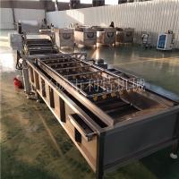 供应上海青喷淋清洗机 蔬菜全自动清洗机 菜苔气泡清洗机