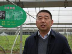 聚焦热点  弘亚·2020第二届中国大球盖菇产业发展大会圆满结束 ()