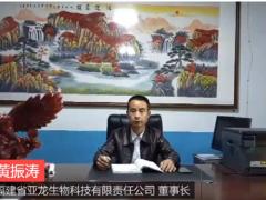 福建省亚龙生物为2020第二届中国大球盖菇产业发展大会提供赞助支持 ()