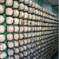 食用菌网架网格a浙江食用菌网架网格a食用菌网架网格生产厂家