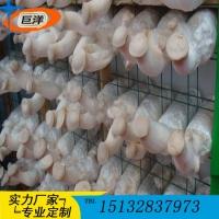 小型工厂恒温菇房出菇架 食用菌网格网架 蘑菇种植架厂家