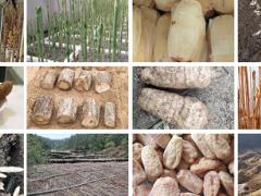 安徽蓝顿生态农业、岳西县昌坳中药材为2020中国天麻产业网络大会提供赞助支持