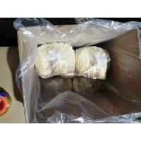 黄金针菇(40斤箱装)