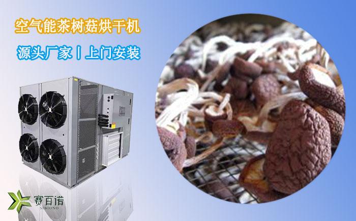 广西茶树菇烘干机