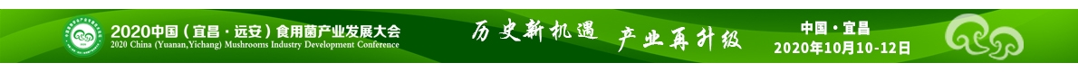 中国(福建)betvlctor伟德产业博览会