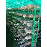 食用菌出菇网架蘑菇养菌层架