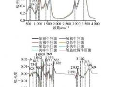 基于支持向量机对云南常见野生食用牛肝菌中红外光谱的种类鉴别